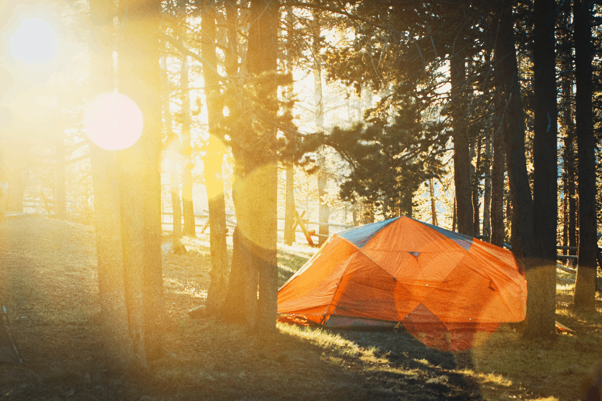 orange tent in the woods with sun shining
