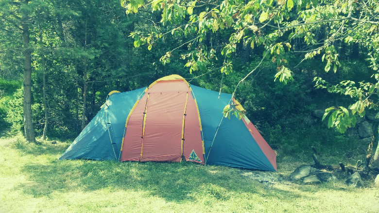 large tent in front of trees