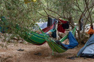 people in hammocks near camping site