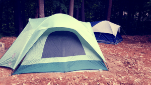 two tents in the outdoor woods