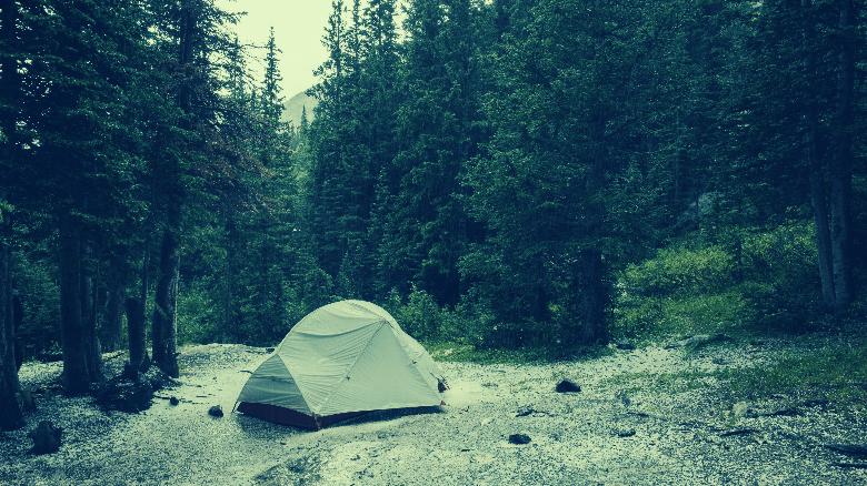 tent in outdoors among trees