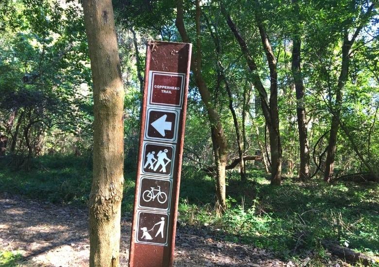 copperhead trail sfa sp