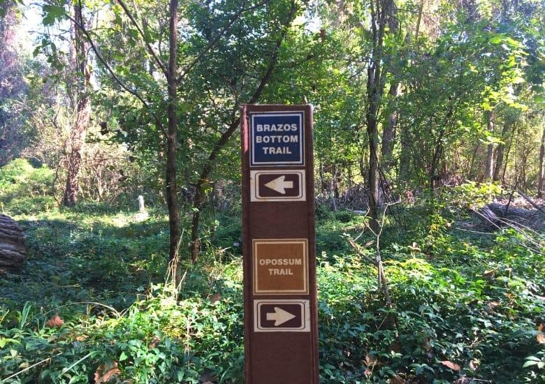 brazzos bottom trail sfa sp